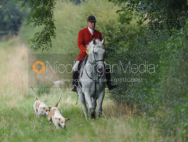Cottesmore Huntsman Andrew Osborne with hounds near Knossington