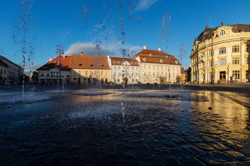 Town hall and Roman Catholic Cathedral reflected in the Puddle left by the Fountains on Piata Mare