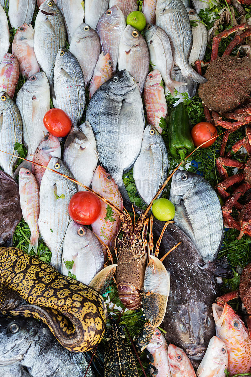 Selection of Seafood at Restaurant