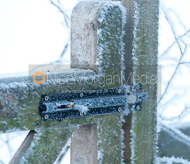 Hoar frost on a garden gate bolt