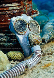 Gas mask on sunken ship, Truk Lagoon, Federated States of Micronesia