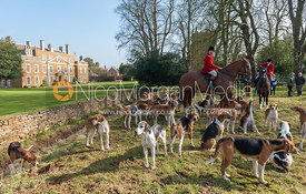 Huntsman and hounds in front of Goadby Marwood Hall.