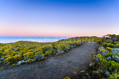 Hiking trail during sunrise at volcanic area of Reunion Island