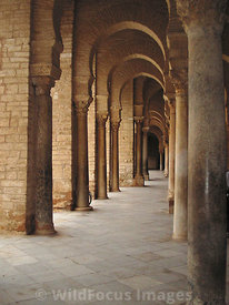 Inside the Grand Mosque's arched colonade, showing some of the Roman columns that were salvaged for its construction, Kairouan, Tunisia; Portrait
