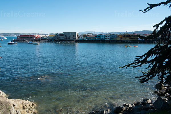 Scenic view of Monterey town as seen from across the bay.