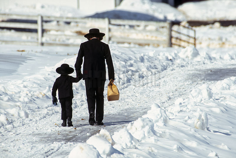 Amish Father and Son Walking up Snow Covered Road