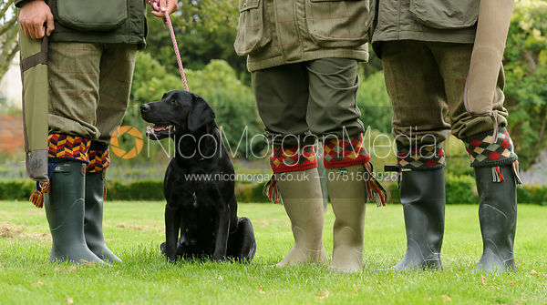 Wellington boots and shooting socks
