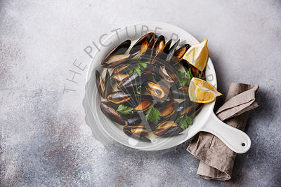 Bivalve Mussels Clams in white dish pan with parsley and lemon on gray background copy space