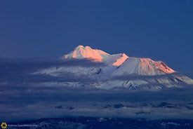 Summit of Mount Shasta at Sunset