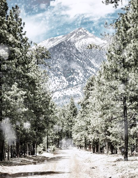 Winter Road to Humphrey's Peak in Flagstaff Arizona