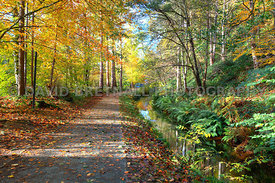 Autumn At The Beginning Of The Llangollen Canal