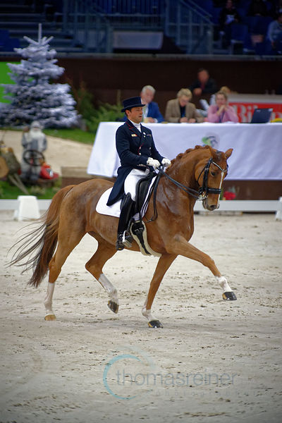 Dressage Freestyle photos