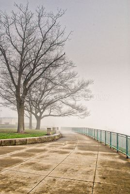 West End Overlook In Fog