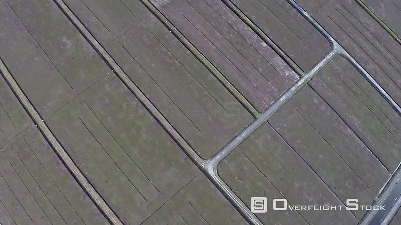 Farming in Pitt Meadows BC Canada