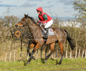 L'ELDORADO (Meisha Micklewright) - Race 3 - The PPORA Club Members Conditions Race for Novice Riders