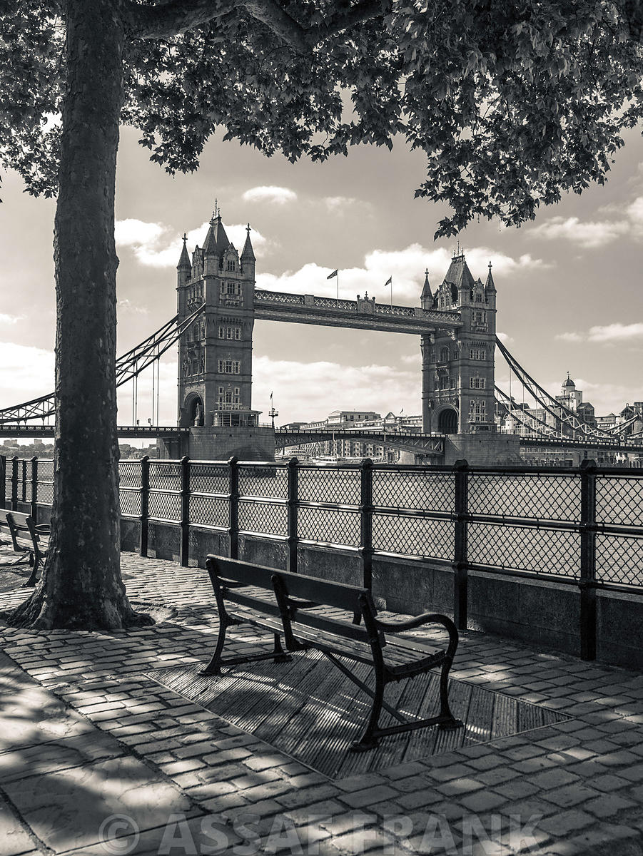 Tower Bridge and the Bench
