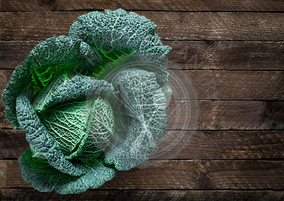 Fresh savoy cabbage
