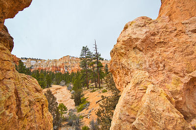 Bryce Canyon Valley- Near Tropic, Utah