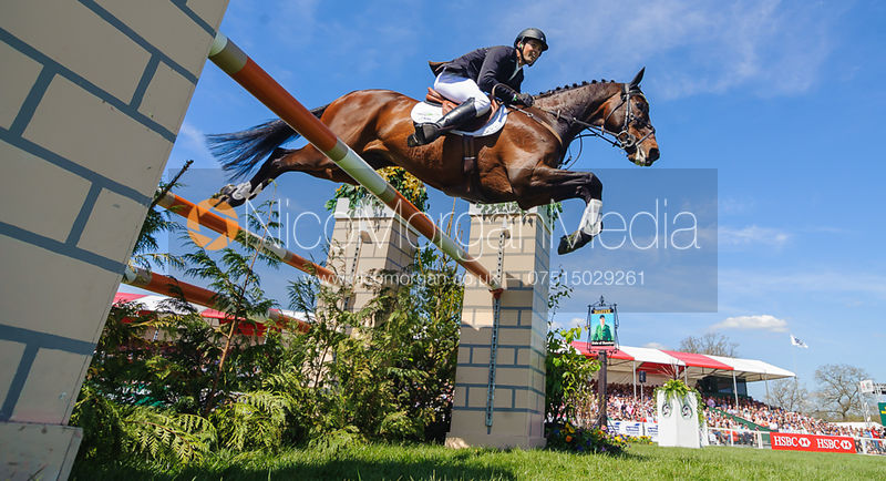 Equestrian Photography photos