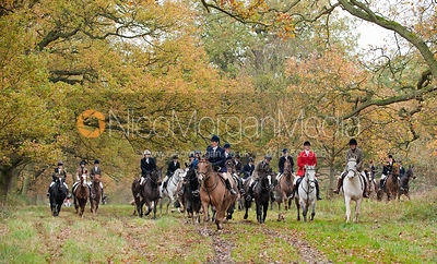 South Wold Hunt photos