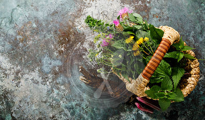 Meadow and Medicinal herbs and burdock root for clean eating biohackers paleo diet copy space