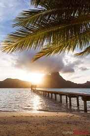 Jetty and palm tree at sunset, Bora Bora, French Polynesia