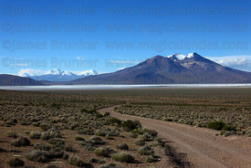 Empty dirt road near Salar de Surire and Cerro Arintica volcano, Region XV , Chile