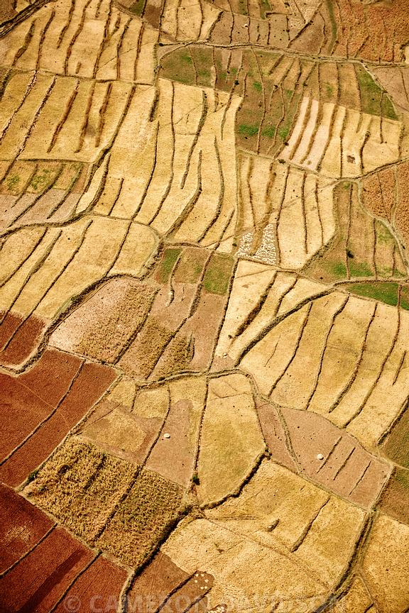 Aerial, Ethiopia, Agricultural Fields