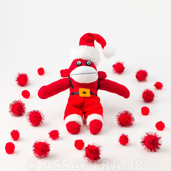 Christmas monkey on white background