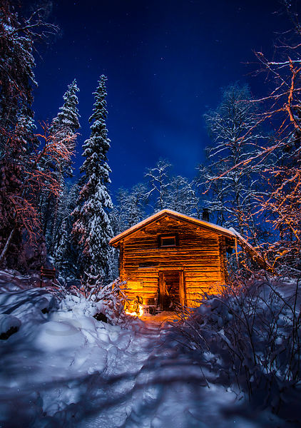 Cabin in forest