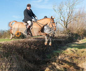 Andrew Berry jumping a hedge near the meet - The Quorn Hunt at Swan Lodge 16/12