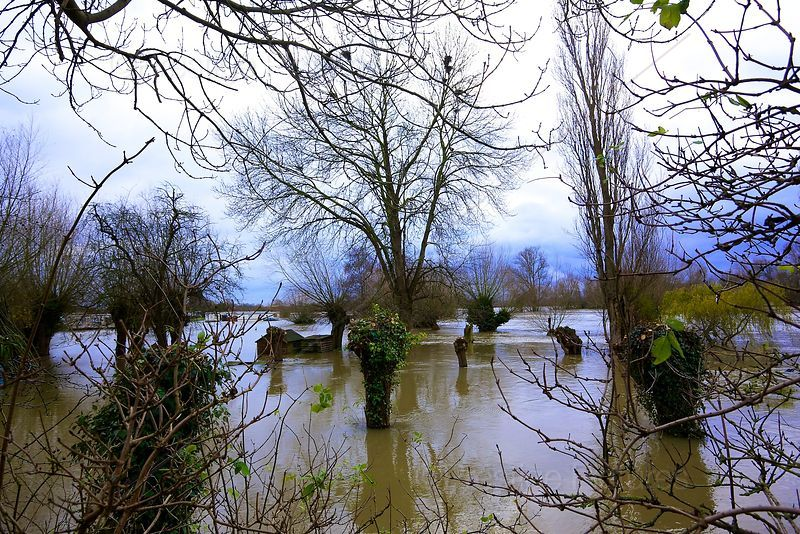 Private Garden Flooded next to the River Thames by  Clifton Hampden