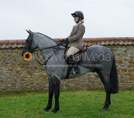 Colin Jaggard - The Cottesmore Hunt at Tilton on the Hill 10/11/12