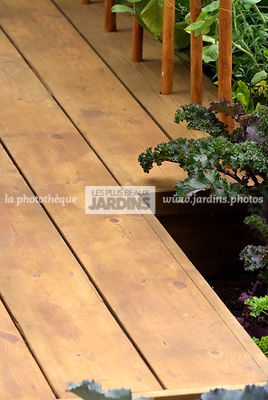 garden designer, Wood, Wooden Terrace,