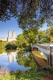 Bow bridge in spring, Central Park, Manhattan, New York, USA
