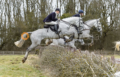 The Cottesmore Hunt at Ladywood 13/2 photos