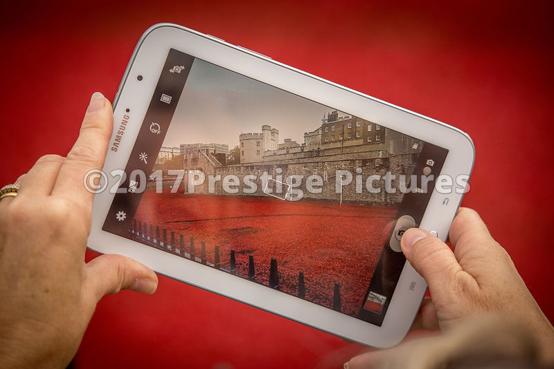 Closeup of a picture being Taken on a Tablet Computer of the Tower of London Poppies