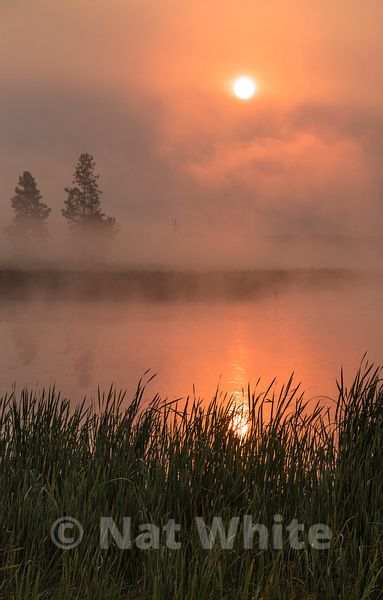 Wild_life_refuge-Montana_sunrise-RMSP_nat_wild_refuge_sunrise2017-483-August_07_2017