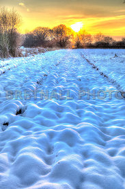 Snow Ploughed Field At Sunset 2 (Off Flag Lane North)