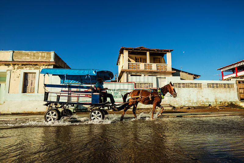 Horse and Buggy Taxi on the Malecon after a Wave flooded the Road