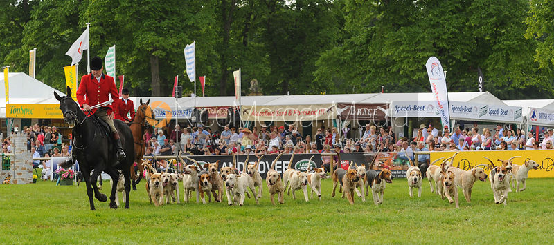 Parade of Hounds, Bramham Horse Trials 2013 photos