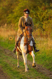 Cantering towards Mrs Wilson's covert 27/9