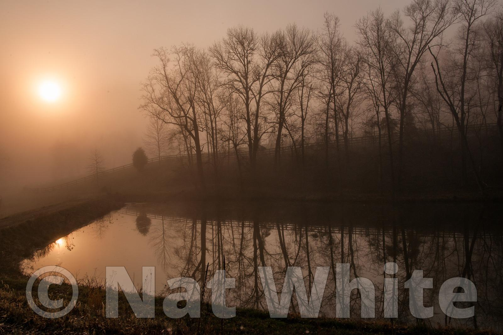 Canyon_Farm_Pond_in_sunrise-NAW_1058-March_18_2012