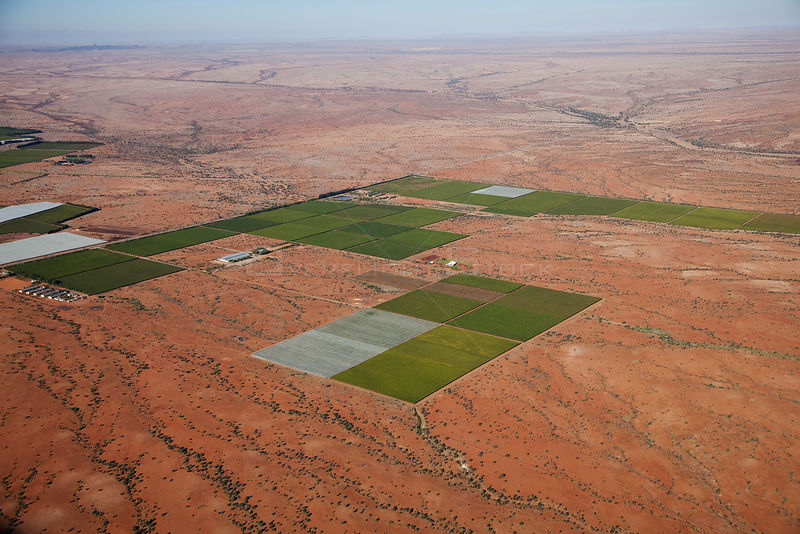 Aerial view of desert vineyards, Northern Cape, South Africa, January 2010