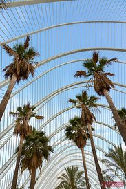 the Umbracle, City of Arts and Sciences, Valencia, Spain