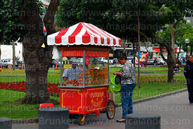 Woman buying sweet snacks at a cart in Parque Kennedy, Miraflores, Lima, Peru