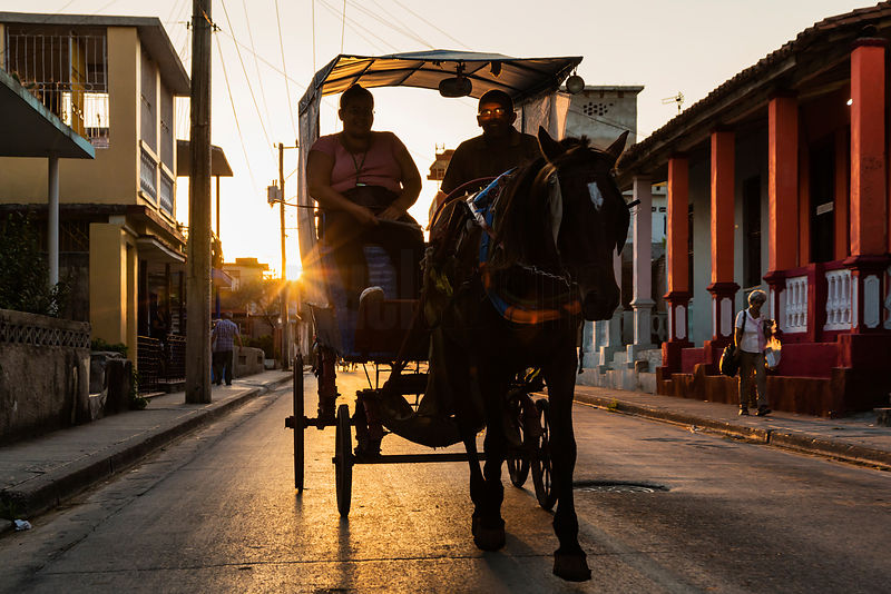 Horse and Buggy Taxi at Sunset