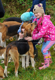 Young followers getting to know the hounds - The Belvoir Hunt at Long Clawson, 2-11-13