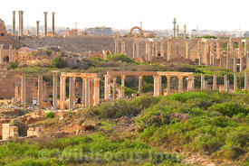 LIBYA: Leptis Magna -Overview of Leptis to the NW from atop the Severan Basilica