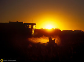 Sunset Harvester #2